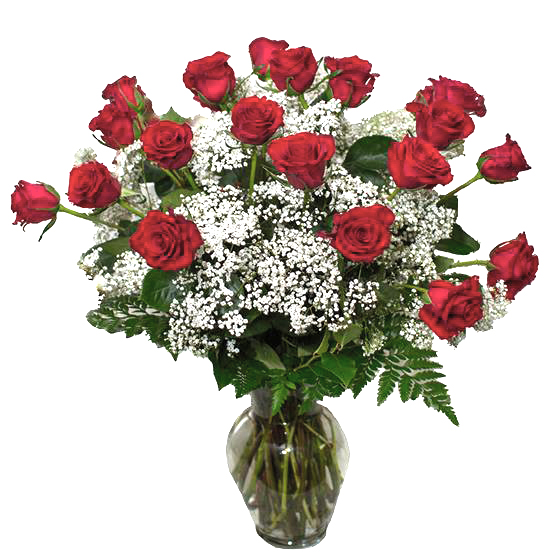 Ultimate Holiday Expression - 24 Deluxe Long Stem Roses